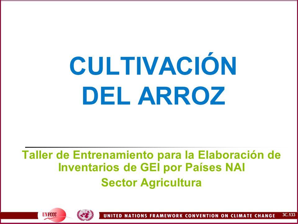 3C.133 CULTIVACIÓN DEL ARROZ Taller de Entrenamiento para la Elaboración de Inventarios de GEI por Países NAI Sector Agricultura