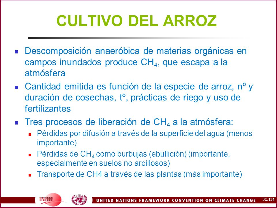 3C.134 CULTIVO DEL ARROZ Descomposición anaeróbica de materias orgánicas en campos inundados produce CH 4, que escapa a la atmósfera Cantidad emitida