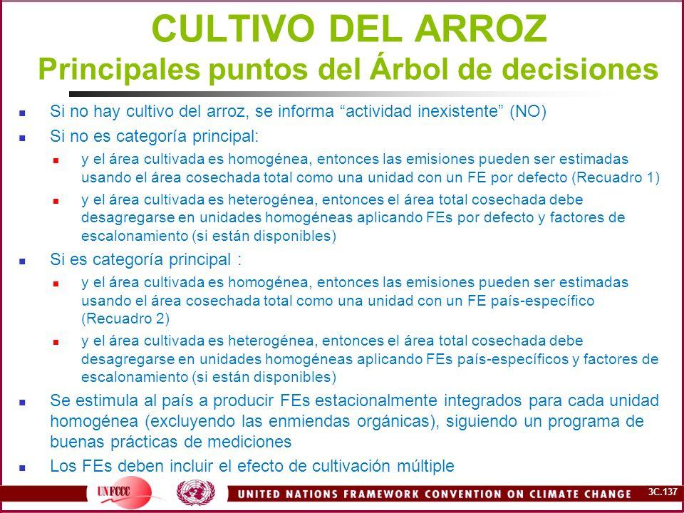 3C.137 CULTIVO DEL ARROZ Principales puntos del Árbol de decisiones Si no hay cultivo del arroz, se informa actividad inexistente (NO) Si no es catego