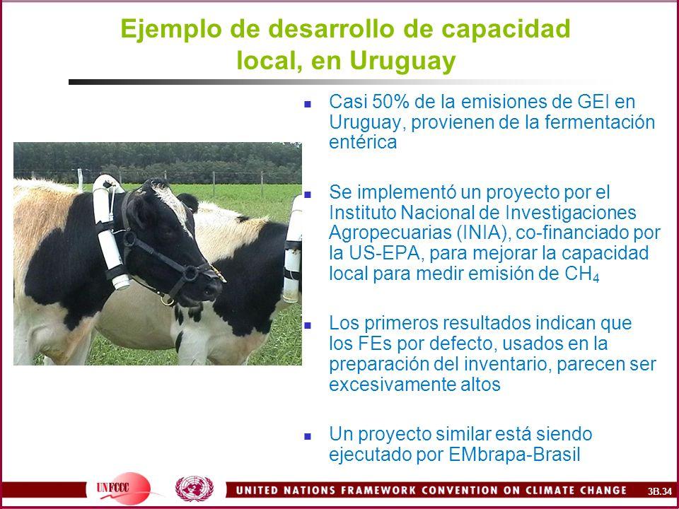 Ejemplo de desarrollo de capacidad local, en Uruguay Casi 50% de la emisiones de GEI en Uruguay, provienen de la fermentación entérica Se implementó u