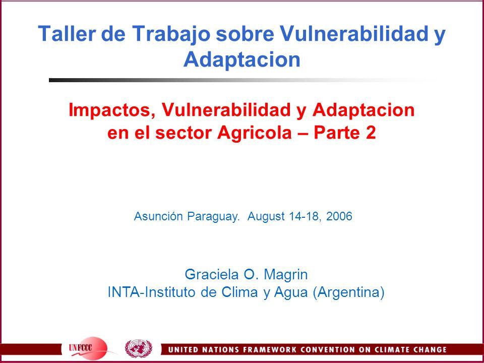 Taller de Trabajo sobre Vulnerabilidad y Adaptacion Impactos, Vulnerabilidad y Adaptacion en el sector Agricola – Parte 2 Asunción Paraguay. August 14