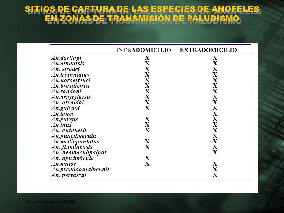 INTRADOMICILIOEXTRADOMICILIO An.darlingiXX An.albitarsisXX An. strodeiXX An.trianulatusXX An.noroestenciXX An.brasiliensisXX An.rondoniXX An.argyrytar