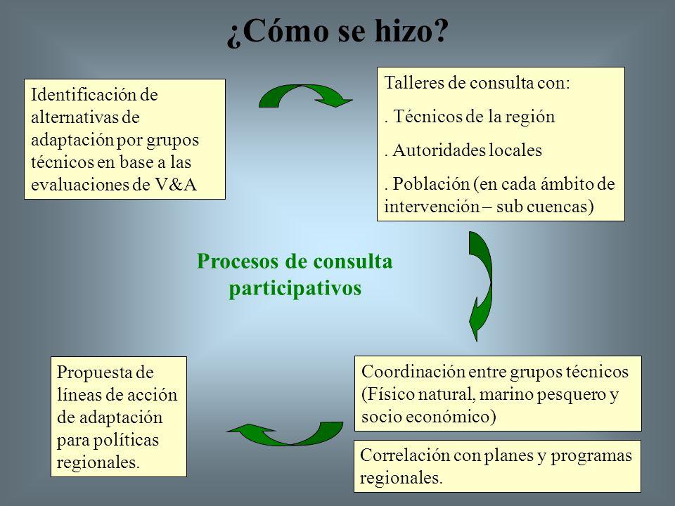 Proceso de Adaptación Pasos: 1.Definición de política 2.