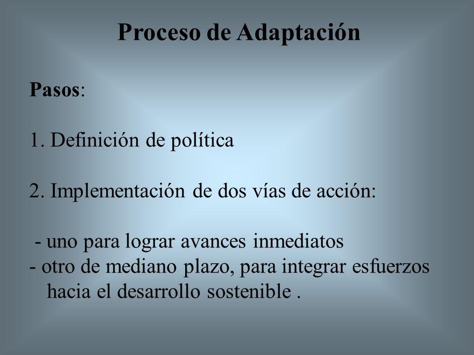 Proceso de Adaptación Pasos: 1. Definición de política 2.