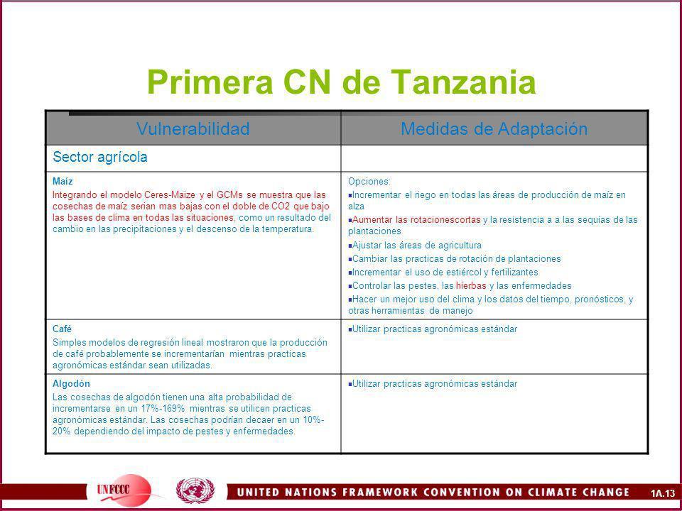 1A.13 Primera CN de Tanzania VulnerabilidadMedidas de Adaptación Sector agrícola Maíz Integrando el modelo Ceres-Maize y el GCMs se muestra que las cosechas de maíz serian mas bajas con el doble de CO2 que bajo las bases de clima en todas las situaciones, como un resultado del cambio en las precipitaciones y el descenso de la temperatura.
