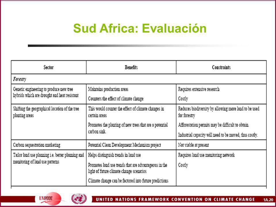 1A.20 Sud Africa: Evaluación