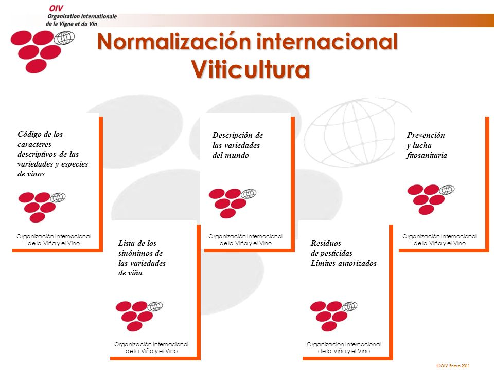 OIV Enero 2011 Normalización internacional Viticultura Descripción de las variedades del mundo Organización Internacional de la Viña y el Vino Lista d