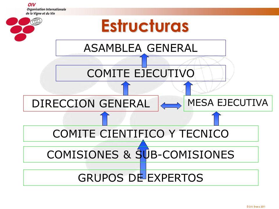 OIV Enero 2011 Estructuras ASAMBLEA GENERAL COMITE EJECUTIVO COMITE CIENTIFICO Y TECNICO GRUPOS DE EXPERTOS COMISIONES & SUB-COMISIONES MESA EJECUTIVA
