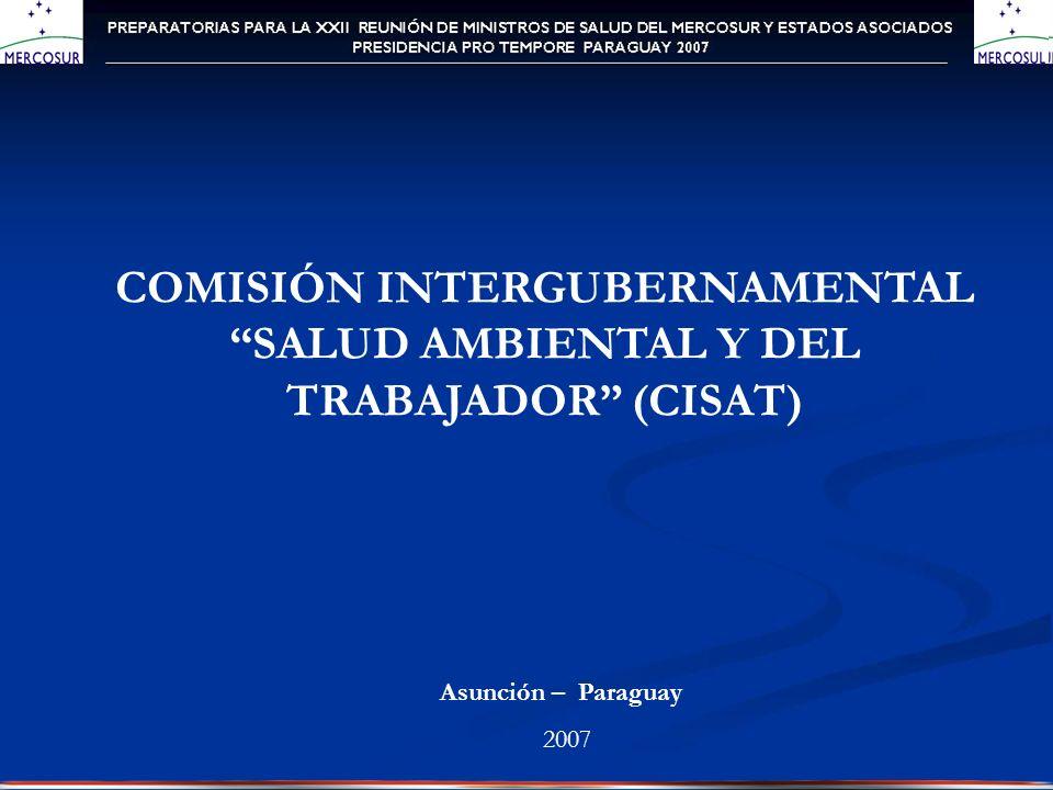 COMISIÓN INTERGUBERNAMENTAL SALUD AMBIENTAL Y DEL TRABAJADOR (CISAT) Asunción – Paraguay 2007