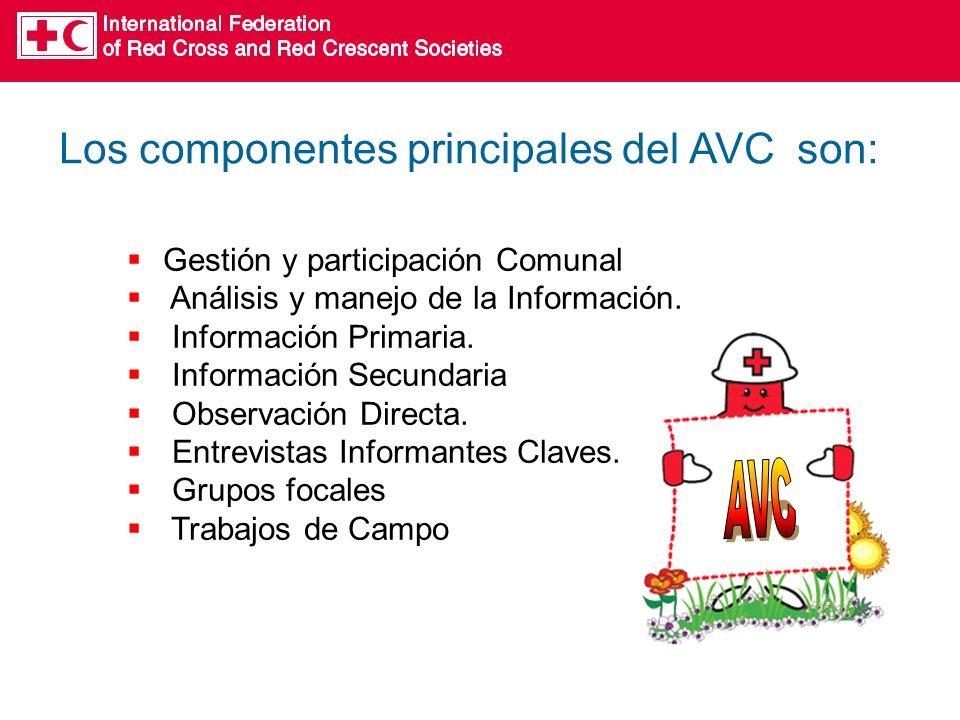 Los componentes principales del AVC son: Gestión y participación Comunal Análisis y manejo de la Información.