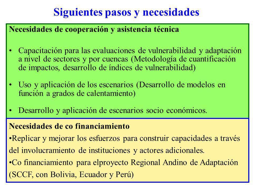 Siguientes pasos y necesidades Necesidades de cooperación y asistencia técnica Capacitación para las evaluaciones de vulnerabilidad y adaptación a niv