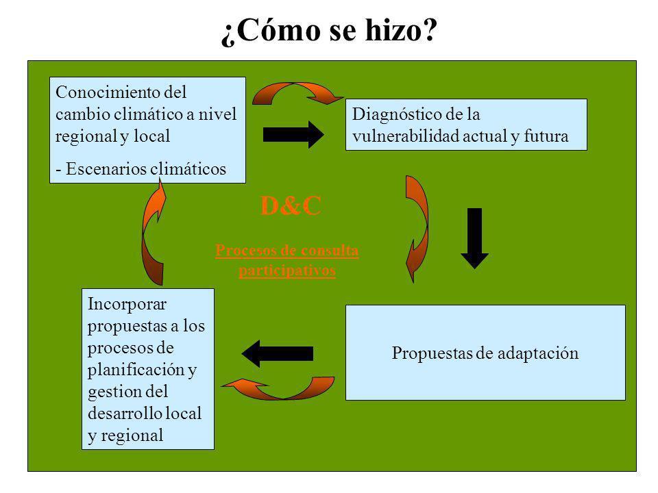 ¿Cómo se hizo? Diagnóstico de la vulnerabilidad actual y futura Propuestas de adaptación Incorporar propuestas a los procesos de planificación y gesti