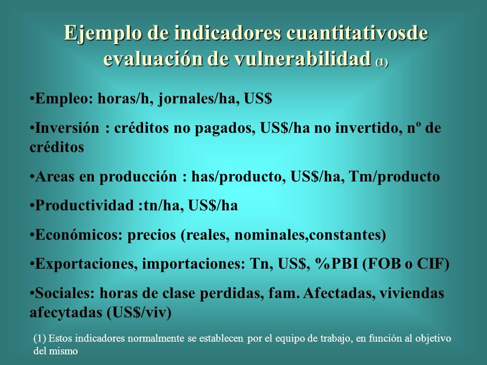 Ejemplo de indicadores cuantitativosde evaluación de vulnerabilidad (1) Empleo: horas/h, jornales/ha, US$ Inversión : créditos no pagados, US$/ha no i