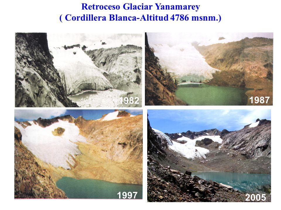 Retroceso Glaciar Yanamarey ( Cordillera Blanca-Altitud 4786 msnm.) 1982 1987 1997 2005