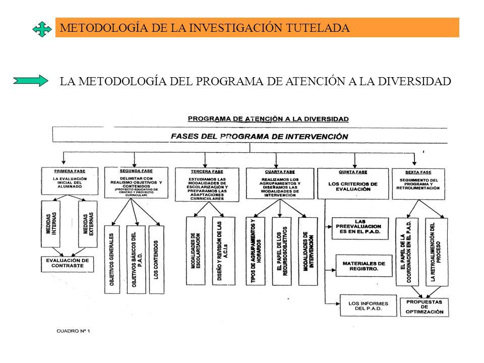 METODOLOGÍA DE LA INVESTIGACIÓN TUTELADA LA METODOLOGÍA DEL PROGRAMA DE ATENCIÓN A LA DIVERSIDAD