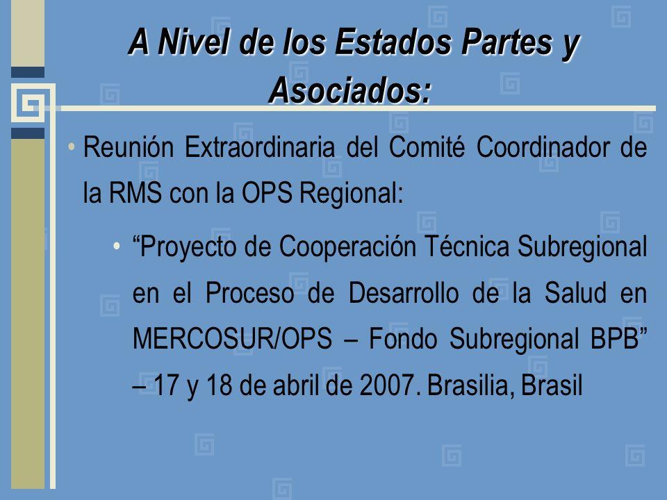 Reunión Extraordinaria del Comité Coordinador de la RMS con la OPS Regional: Proyecto de Cooperación Técnica Subregional en el Proceso de Desarrollo de la Salud en MERCOSUR/OPS – Fondo Subregional BPB – 17 y 18 de abril de 2007.