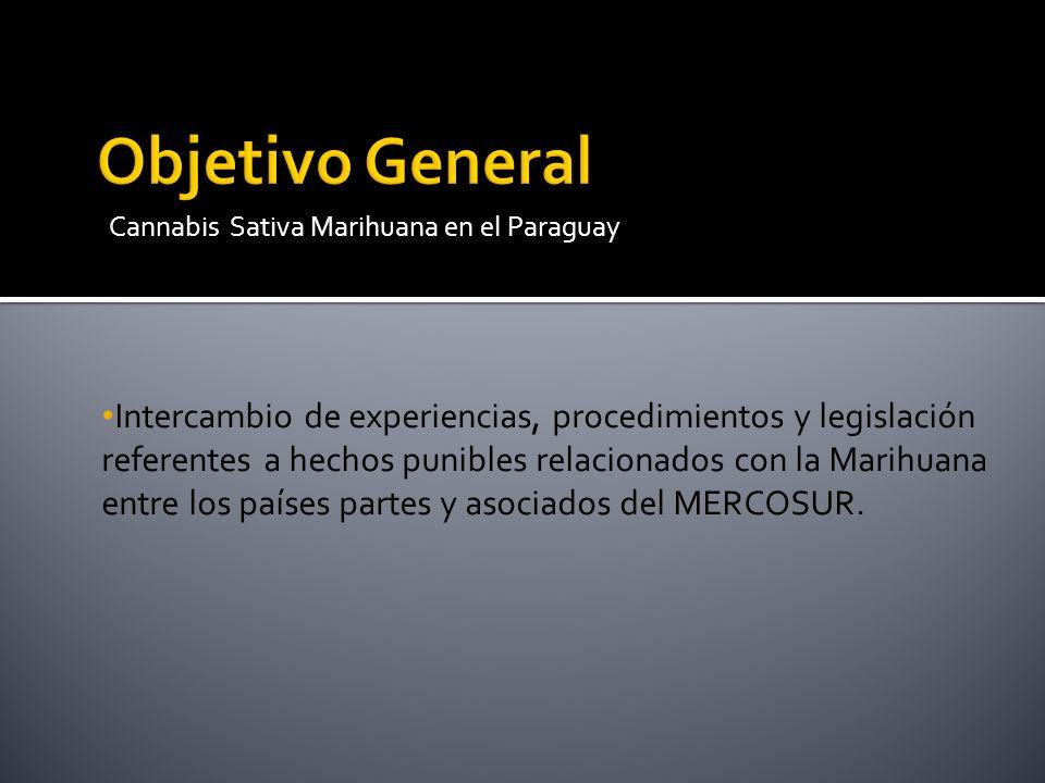 Intercambio de experiencias, procedimientos y legislación referentes a hechos punibles relacionados con la Marihuana entre los países partes y asociad