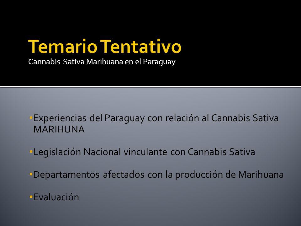 Experiencias del Paraguay con relación al Cannabis Sativa MARIHUNA Legislación Nacional vinculante con Cannabis Sativa Departamentos afectados con la
