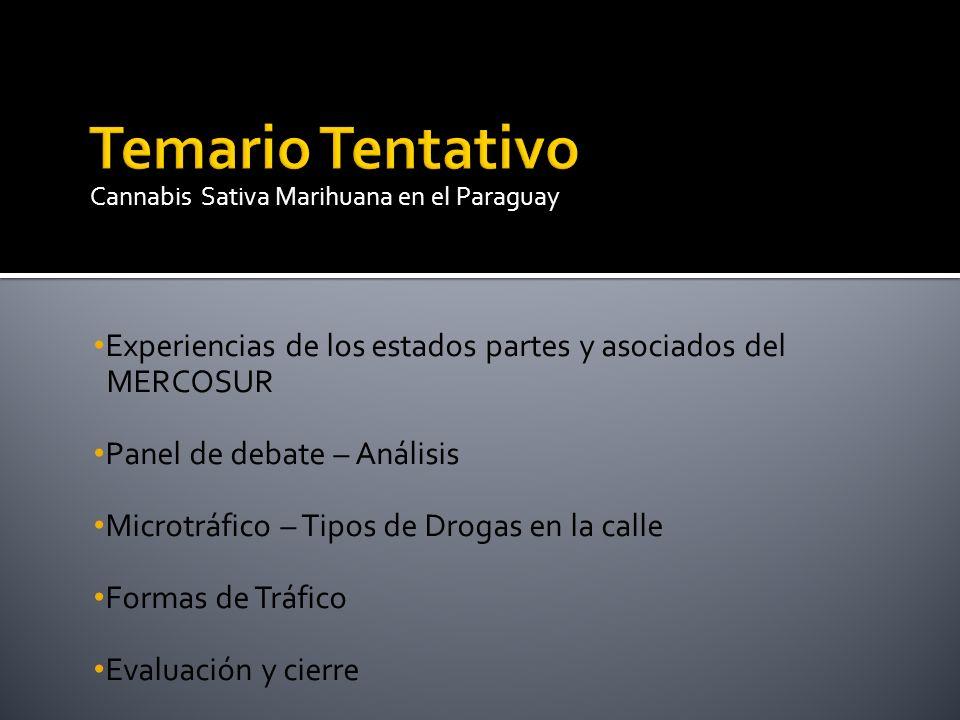 Experiencias de los estados partes y asociados del MERCOSUR Panel de debate – Análisis Microtráfico – Tipos de Drogas en la calle Formas de Tráfico Ev