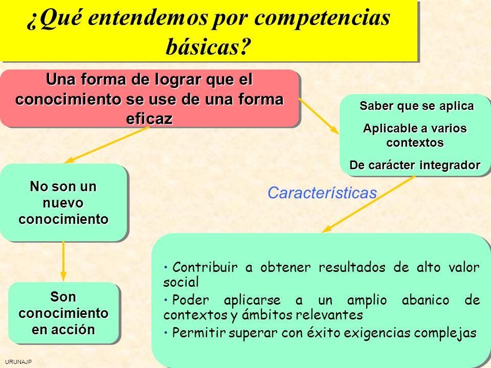 URUNAJP Competencias básicas Elementos Elementos Saber hacer, saber práctico Adaptable a diversidad de contextos Carácter integrador