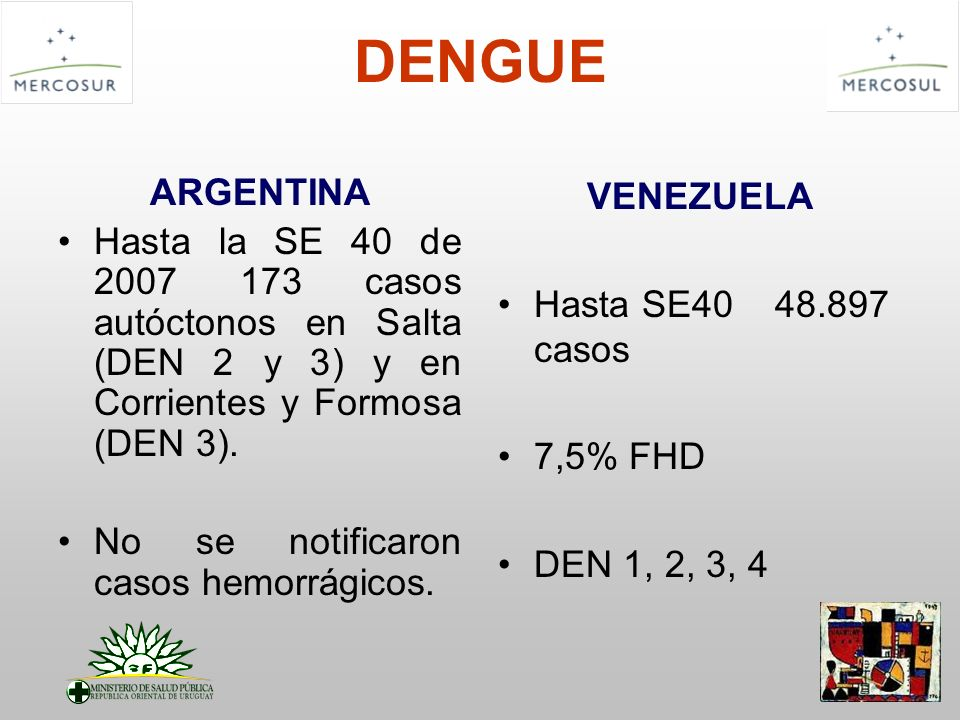 DENGUE ARGENTINA Hasta la SE 40 de 2007 173 casos autóctonos en Salta (DEN 2 y 3) y en Corrientes y Formosa (DEN 3). No se notificaron casos hemorrági