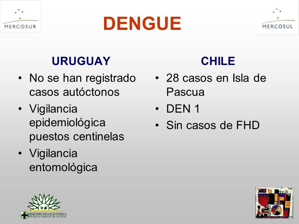 DENGUE URUGUAY No se han registrado casos autóctonos Vigilancia epidemiológica puestos centinelas Vigilancia entomológica CHILE 28 casos en Isla de Pa