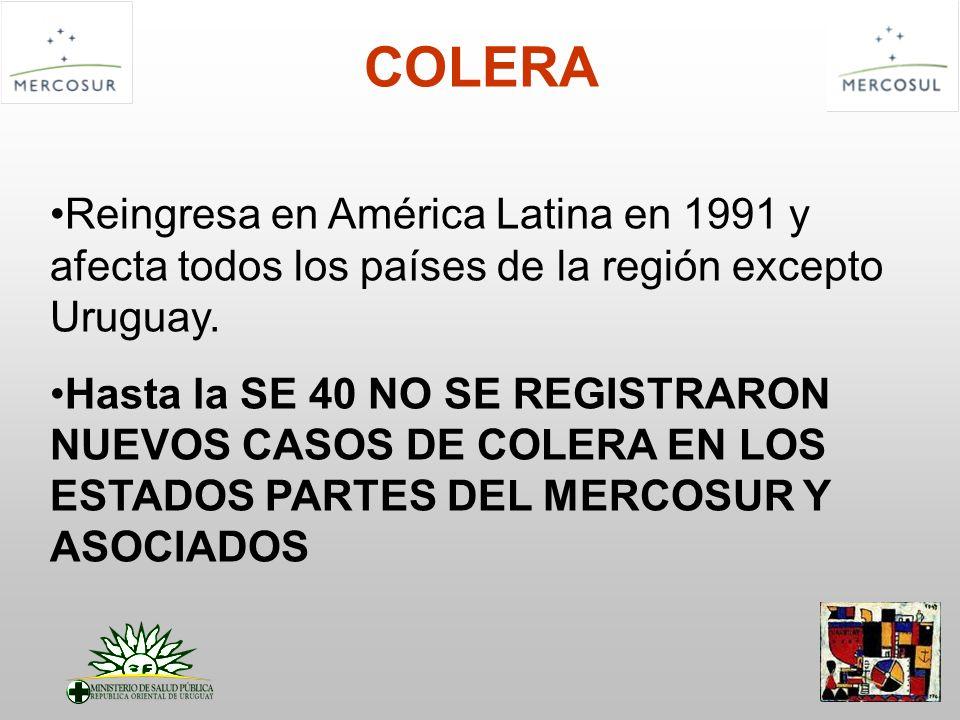 COLERA Reingresa en América Latina en 1991 y afecta todos los países de la región excepto Uruguay. Hasta la SE 40 NO SE REGISTRARON NUEVOS CASOS DE CO