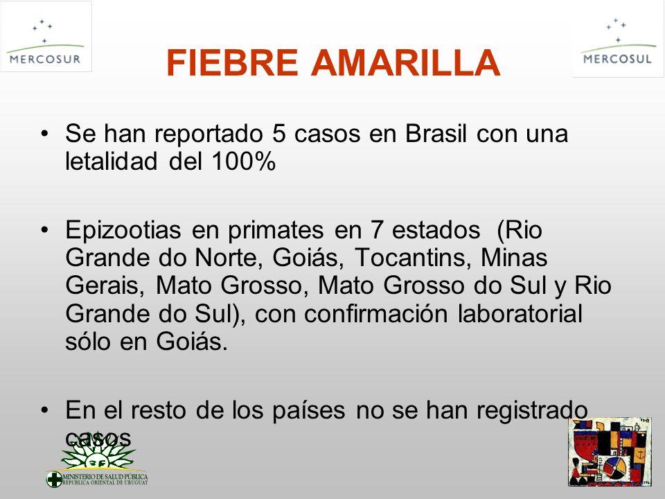FIEBRE AMARILLA Se han reportado 5 casos en Brasil con una letalidad del 100% Epizootias en primates en 7 estados (Rio Grande do Norte, Goiás, Tocanti