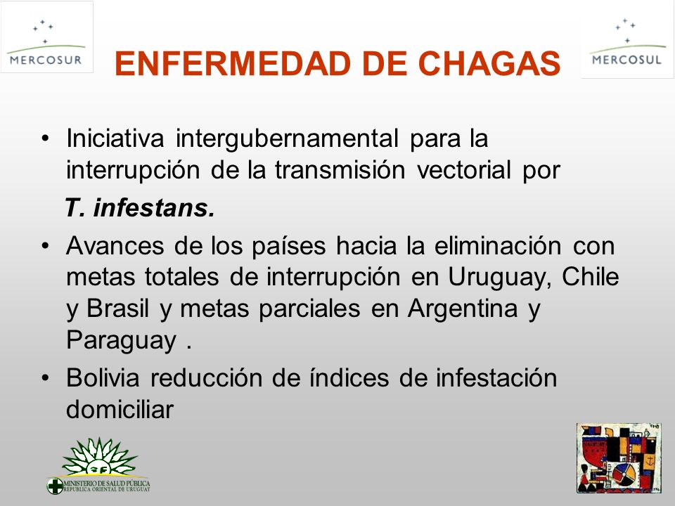 ENFERMEDAD DE CHAGAS Iniciativa intergubernamental para la interrupción de la transmisión vectorial por T. infestans. Avances de los países hacia la e