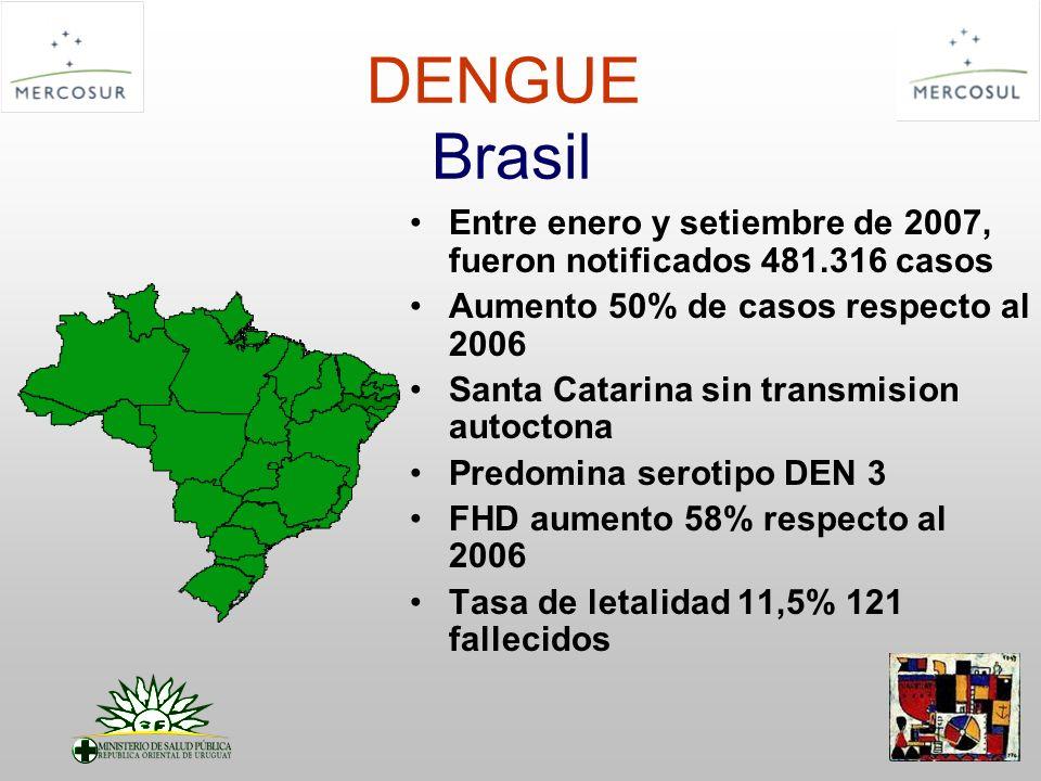 DENGUE Brasil Entre enero y setiembre de 2007, fueron notificados 481.316 casos Aumento 50% de casos respecto al 2006 Santa Catarina sin transmision a
