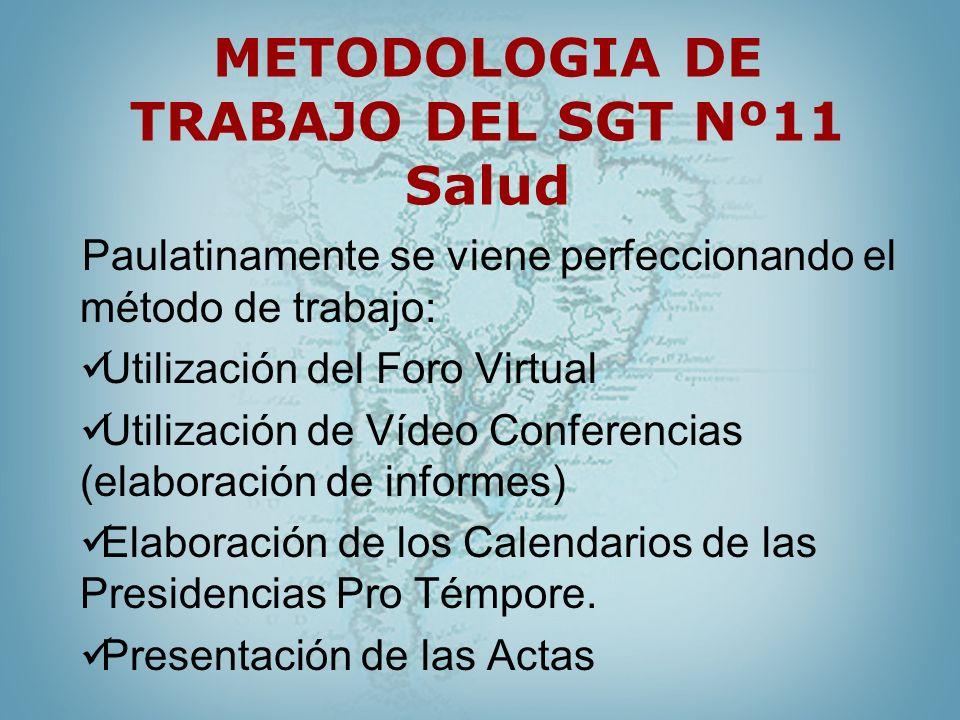 METODOLOGIA DE TRABAJO DEL SGT Nº11 Salud Paulatinamente se viene perfeccionando el método de trabajo: Utilización del Foro Virtual Utilización de Víd