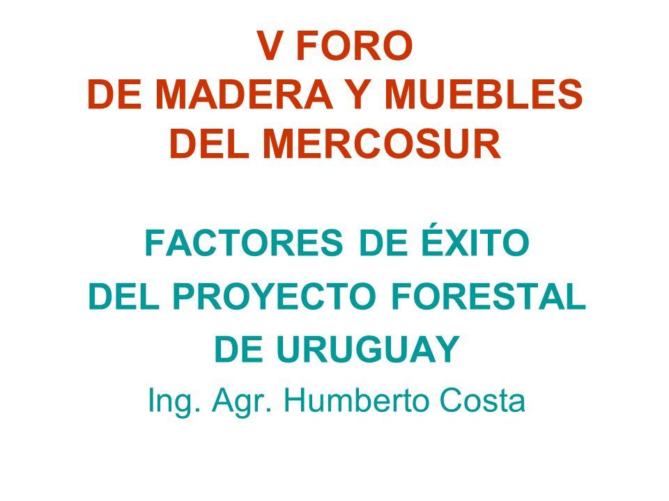 V FORO DE MADERA Y MUEBLES DEL MERCOSUR FACTORES DE ÉXITO DEL PROYECTO FORESTAL DE URUGUAY Ing.