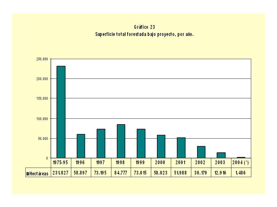 Superficie total forestada bajo proyecto, por año, según departamento (en hectáreas) (1).