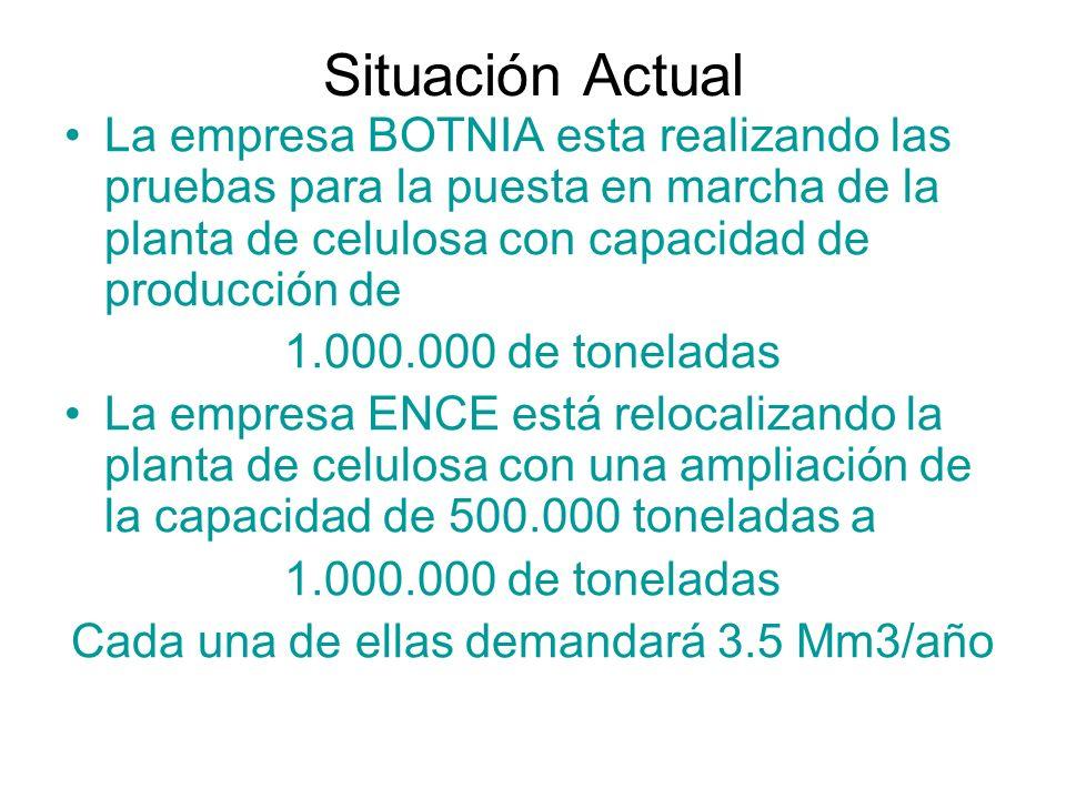 Situación Actual La empresa BOTNIA esta realizando las pruebas para la puesta en marcha de la planta de celulosa con capacidad de producción de 1.000.000 de toneladas La empresa ENCE está relocalizando la planta de celulosa con una ampliación de la capacidad de 500.000 toneladas a 1.000.000 de toneladas Cada una de ellas demandará 3.5 Mm3/año