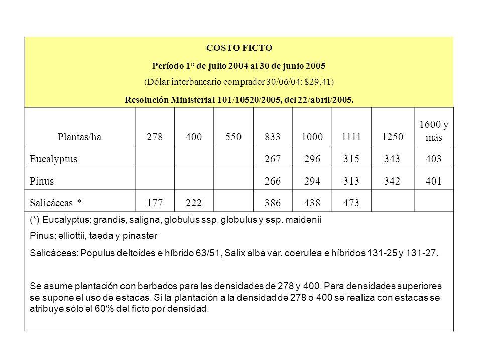 COSTO FICTO Período 1° de julio 2004 al 30 de junio 2005 (Dólar interbancario comprador 30/06/04: $29,41) Resolución Ministerial 101/10520/2005, del 22/abril/2005.