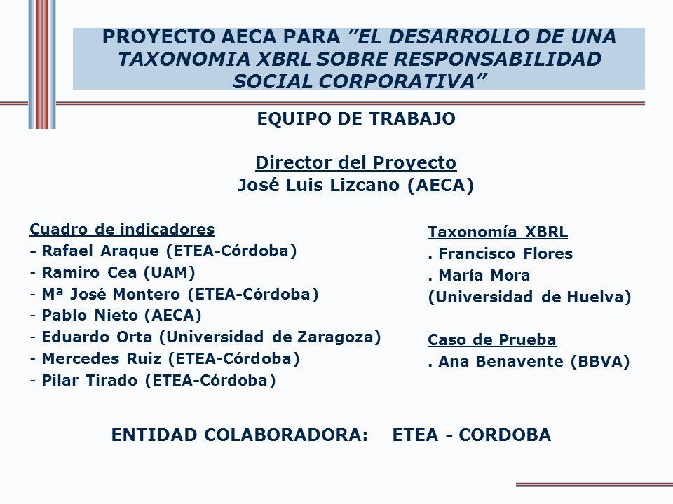 EQUIPO DE TRABAJO Director del Proyecto José Luis Lizcano (AECA) PROYECTO AECA PARA EL DESARROLLO DE UNA TAXONOMIA XBRL SOBRE RESPONSABILIDAD SOCIAL C