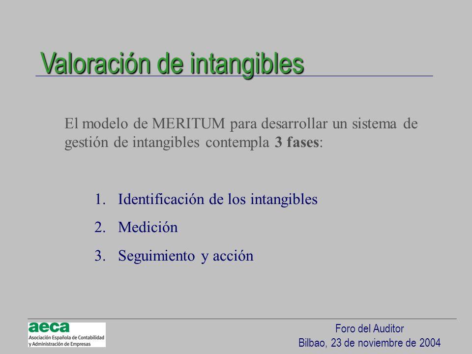 Foro del Auditor Bilbao, 23 de noviembre de 2004 Valoración de intangibles El modelo de MERITUM para desarrollar un sistema de gestión de intangibles