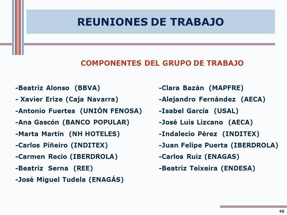 REUNIONES DE TRABAJO COMPONENTES DEL GRUPO DE TRABAJO -Beatriz Alonso (BBVA) -Clara Bazán (MAPFRE) - Xavier Erize (Caja Navarra) -Alejandro Fernández