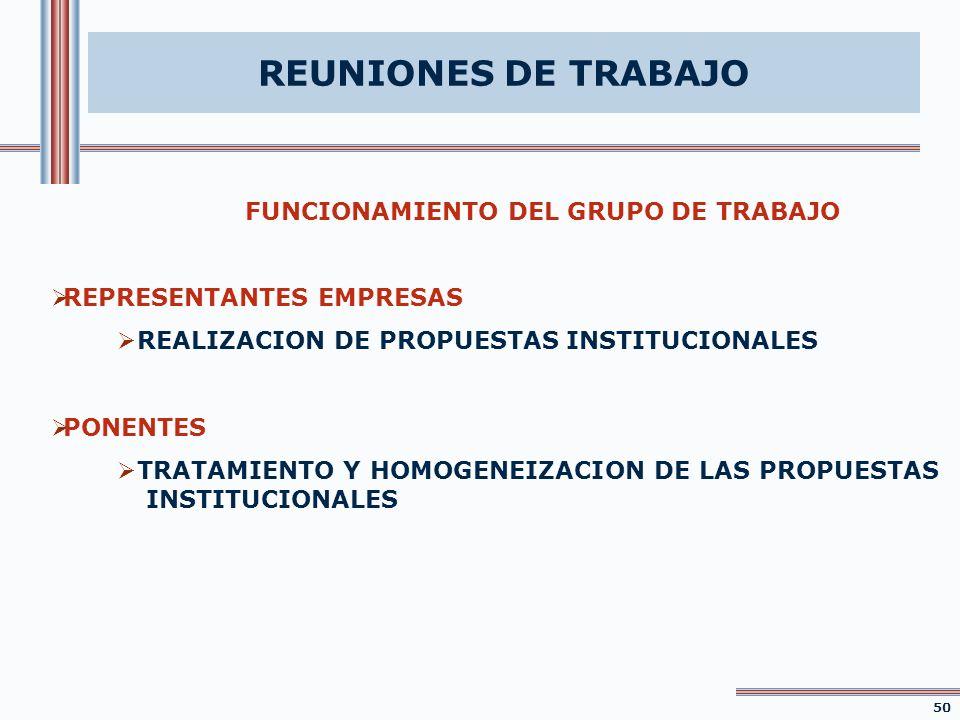 REUNIONES DE TRABAJO FUNCIONAMIENTO DEL GRUPO DE TRABAJO REPRESENTANTES EMPRESAS REALIZACION DE PROPUESTAS INSTITUCIONALES PONENTES TRATAMIENTO Y HOMO