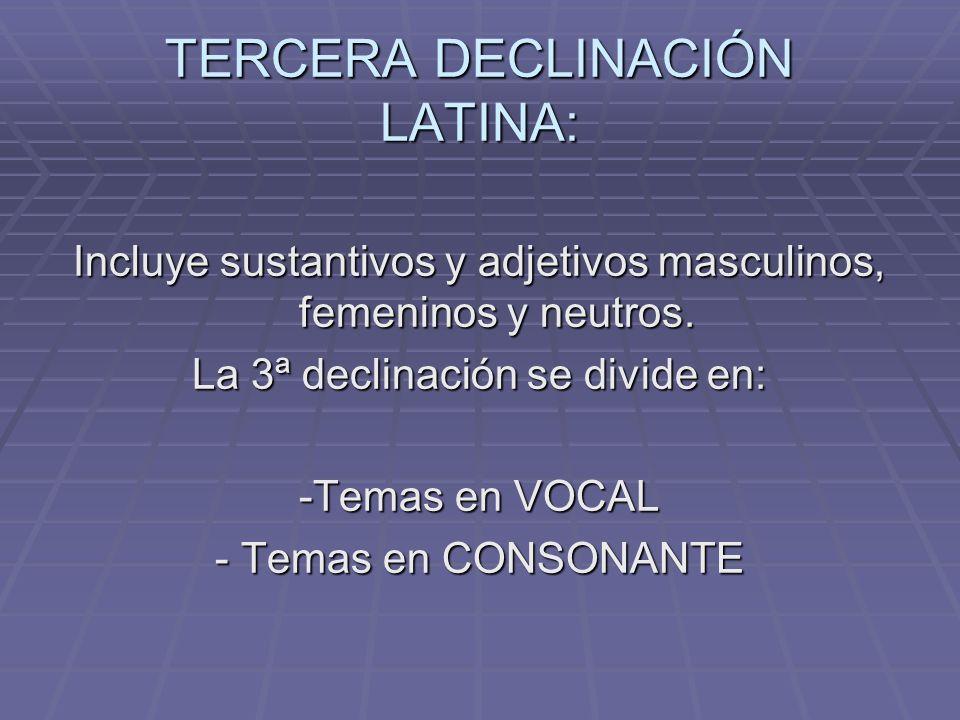 TERCERA DECLINACIÓN LATINA: Incluye sustantivos y adjetivos masculinos, femeninos y neutros.