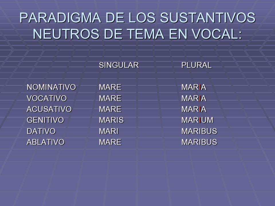 PARADIGMA DE LOS SUSTANTIVOS NEUTROS DE TEMA EN VOCAL: SINGULARPLURAL NOMINATIVOMAREMARIA VOCATIVOMAREMARIA ACUSATIVOMAREMARIA GENITIVOMARISMARIUM DATIVOMARIMARIBUS ABLATIVOMAREMARIBUS