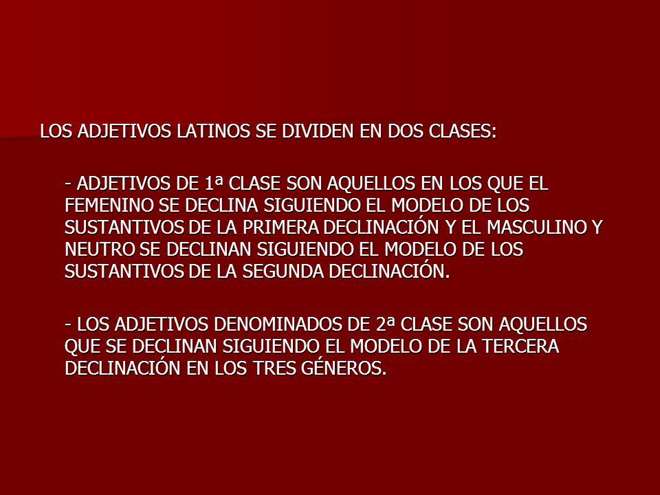 LOS ADJETIVOS LATINOS SE DIVIDEN EN DOS CLASES: - ADJETIVOS DE 1ª CLASE SON AQUELLOS EN LOS QUE EL FEMENINO SE DECLINA SIGUIENDO EL MODELO DE LOS SUST