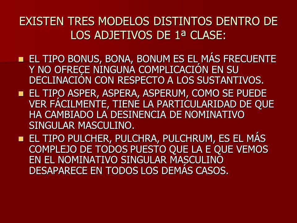 EXISTEN TRES MODELOS DISTINTOS DENTRO DE LOS ADJETIVOS DE 1ª CLASE: EL TIPO BONUS, BONA, BONUM ES EL MÁS FRECUENTE Y NO OFRECE NINGUNA COMPLICACIÓN EN