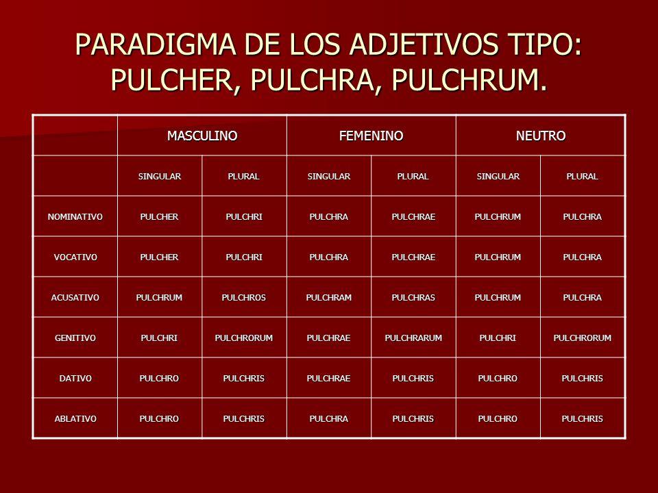 PARADIGMA DE LOS ADJETIVOS TIPO: PULCHER, PULCHRA, PULCHRUM. MASCULINOFEMENINONEUTRO SINGULARPLURALSINGULARPLURALSINGULARPLURAL NOMINATIVOPULCHERPULCH