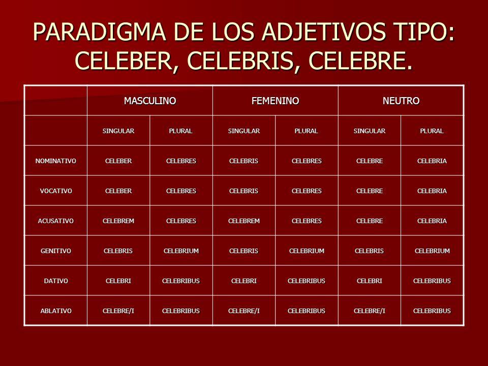 PARADIGMA DE LOS ADJETIVOS TIPO: CELEBER, CELEBRIS, CELEBRE. MASCULINOFEMENINONEUTRO SINGULARPLURALSINGULARPLURALSINGULARPLURAL NOMINATIVOCELEBERCELEB