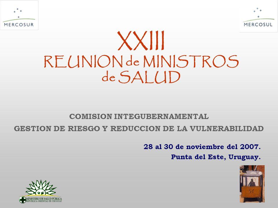 XXIII REUNION de MINISTROS de SALUD 28 al 30 de noviembre del 2007. Punta del Este, Uruguay. COMISION INTEGUBERNAMENTAL GESTION DE RIESGO Y REDUCCION