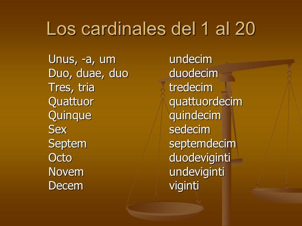 Los cardinales del 1 al 20 Unus, -a, umundecim Duo, duae, duoduodecim Tres, triatredecim Quattuorquattuordecim Quinquequindecim Sexsedecim Septemsepte