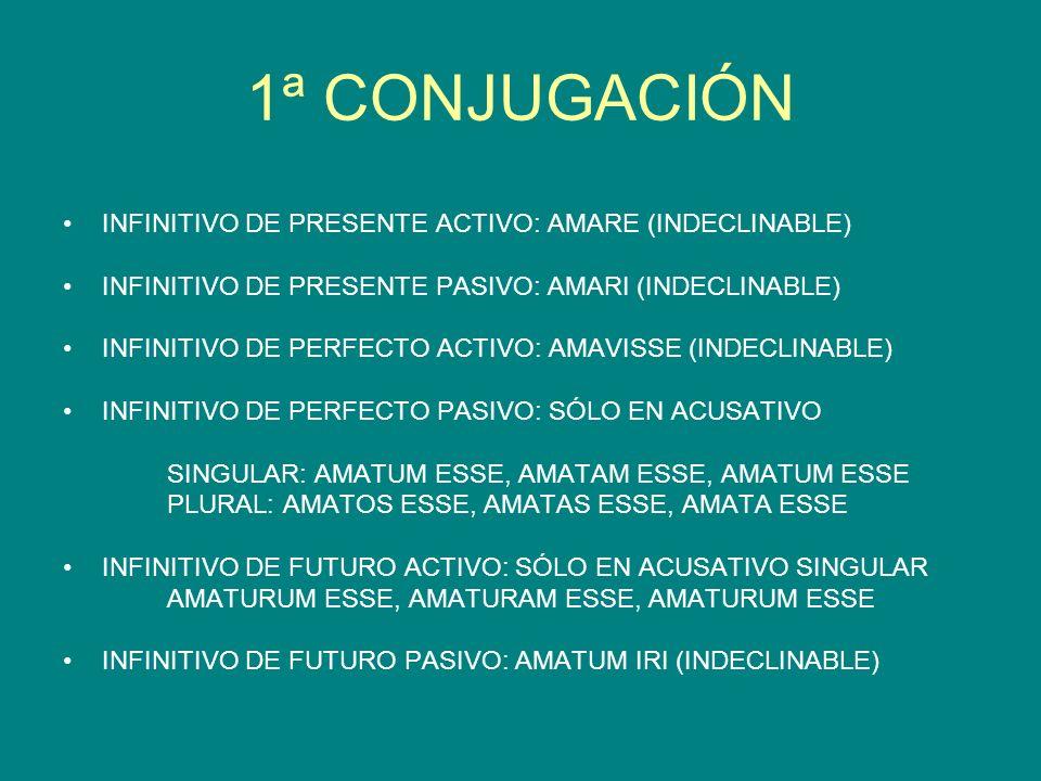 1ª CONJUGACIÓN INFINITIVO DE PRESENTE ACTIVO: AMARE (INDECLINABLE) INFINITIVO DE PRESENTE PASIVO: AMARI (INDECLINABLE) INFINITIVO DE PERFECTO ACTIVO: