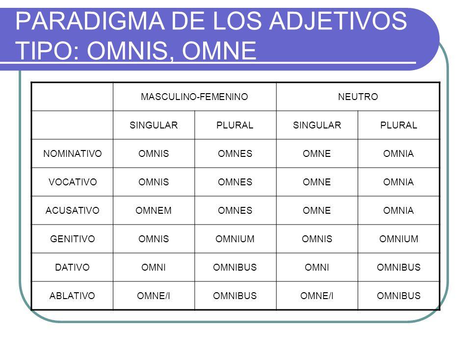 PARADIGMA DE LOS ADJETIVOS TIPO: OMNIS, OMNE MASCULINO-FEMENINONEUTRO SINGULARPLURALSINGULARPLURAL NOMINATIVOOMNISOMNESOMNEOMNIA VOCATIVOOMNISOMNESOMN