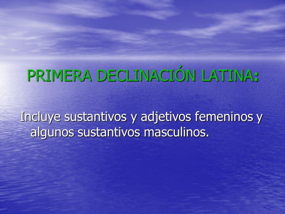 Paradigma de los sustantivos femeninos: Rosa, -ae SINGULARPLURAL NOMINATIVOROSAROSAE VOCATIVOROSAROSAE ACUSATIVOROSAMROSAS GENITIVOROSAEROSARUM DATIVOROSAEROSIS ABLATIVOROSAROSIS